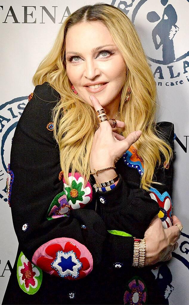 Madonna leonina