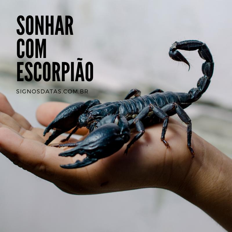 sonhar com escorpião