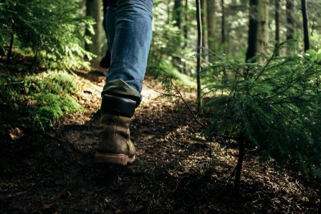 pernas de pessoa caminhando em floresta