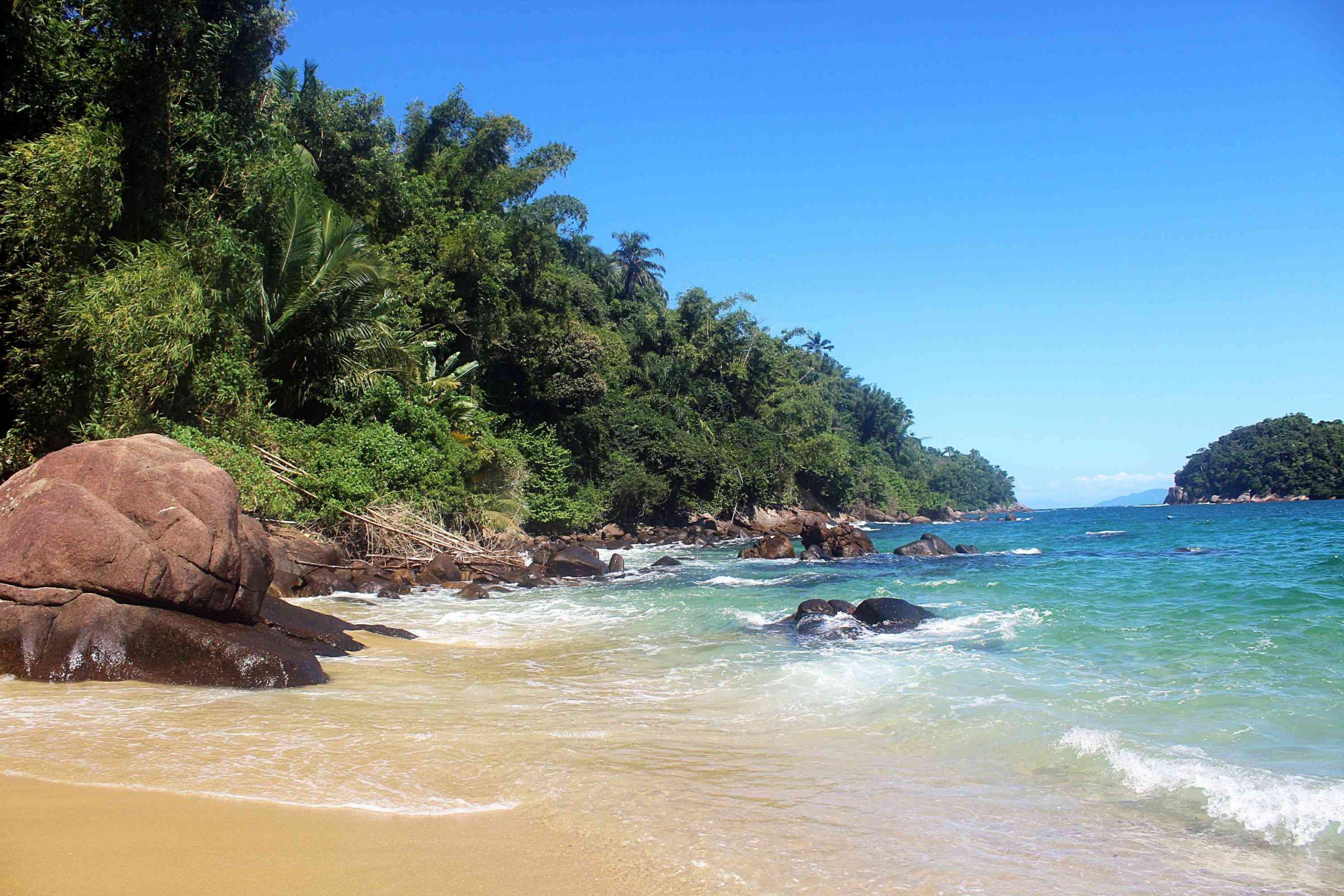 Sonhar com praia: significados, cuidados e mais!